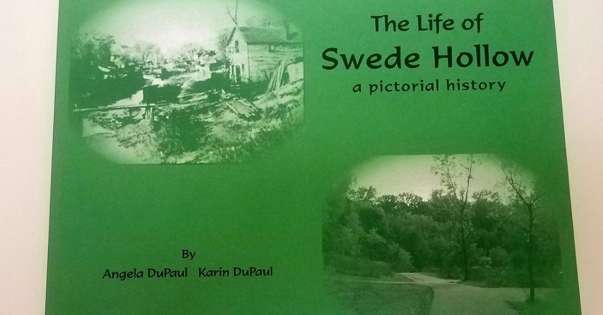 The Life of Swede Hollow book image