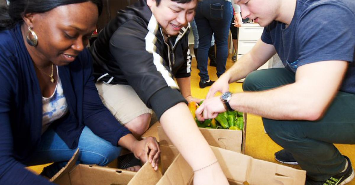 Food for Thought: providing groceries and peace of mind