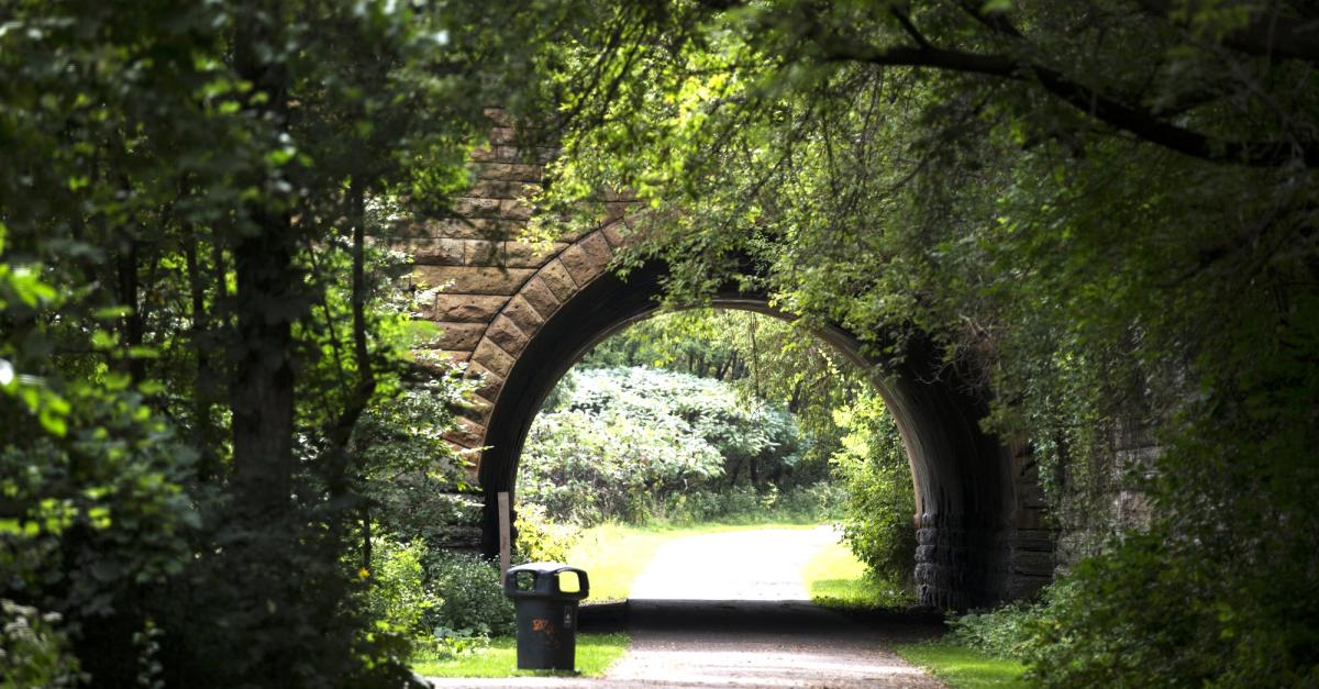 Photo of bridge tunnel in Swede Hollow Park