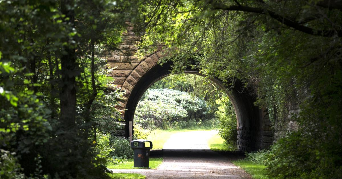 Drewry Tunnel, Swede Hollow Park