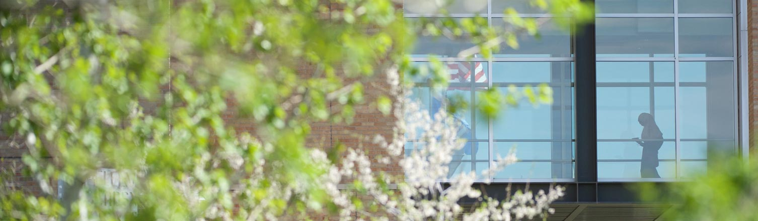 A student moves through the skyway in the background with flowering trees in the foreground.